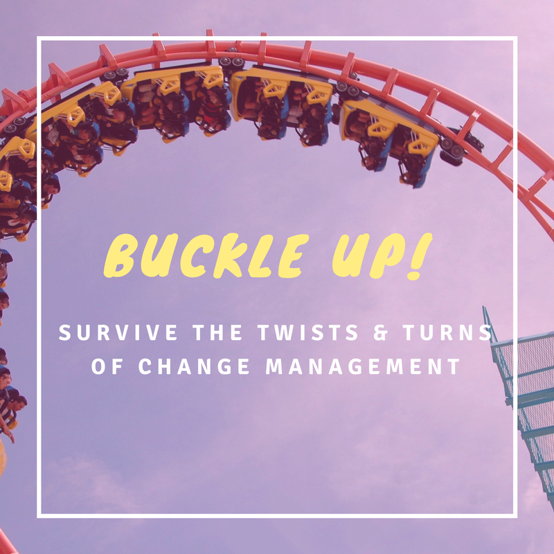 Buckle Up! Survive the Twists and Turns of Change Management Procurement Roller Coaster